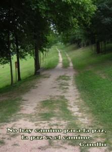 la paz es el camino